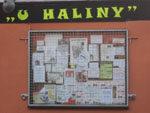 U Haliny