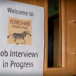 96 nowych miejsc pracy w Yorkshire Wildlife Park w Doncaster